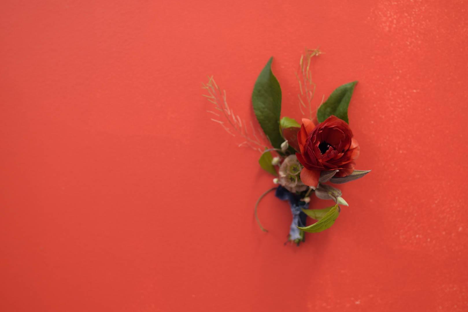 Curious Lola- Slowflowers Demo-33.jpg