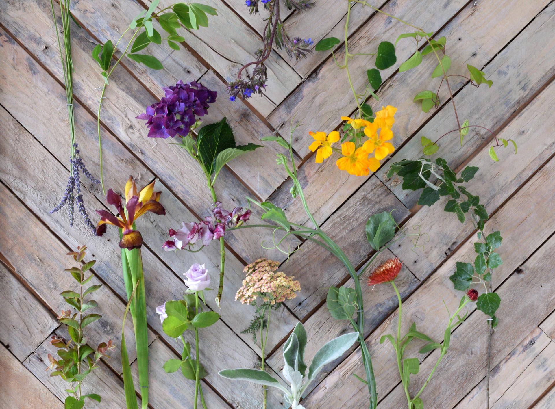 Flower Flat Lay.jpg