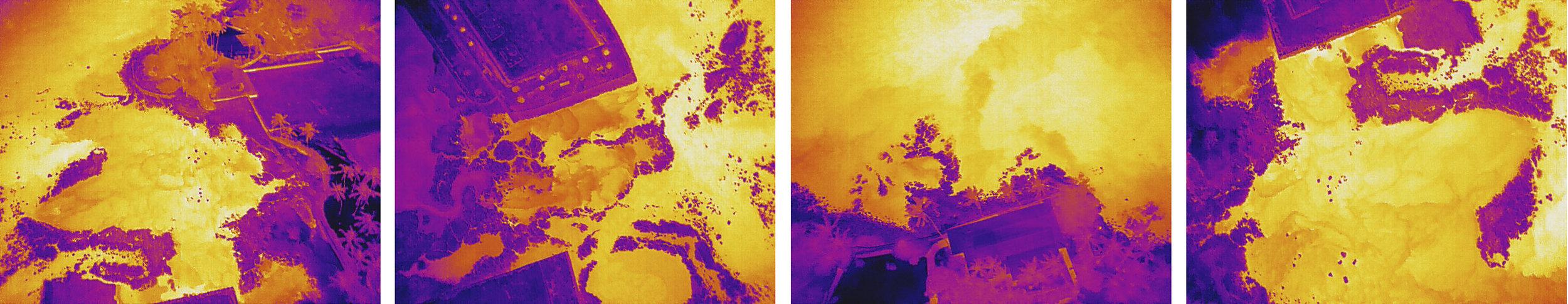 UH Thermal Kahalu'u Timo Collage 20190128-1.jpg
