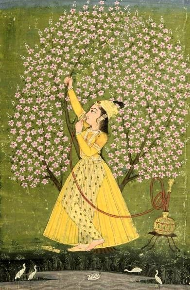 'Lady Under a Tree' - Bikaner (1760)