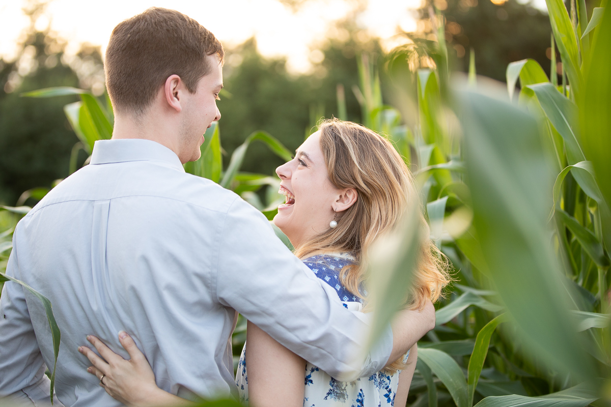 Golden hour engagement photo session in a corn field