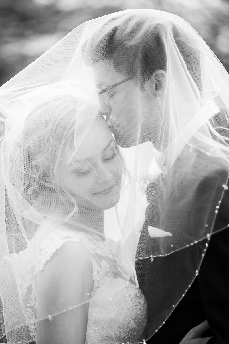 Black and white bride and groom formal photo under the veil.