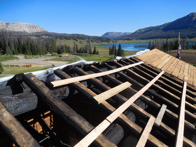 Burnt log ridge, purlins and rafters