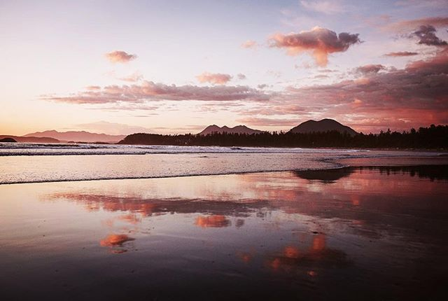 #repost @erinwallisphotography  Home of fresh air, reflections, wide open spaces and cotton candy clouds. . . . . . . . . . . #yourtofino #mytofino #tofino #tofinoaccomodations #travelphotography #destinationbc #destinationtofino #sunset #cabinporn #wonderfulvancouverisland #explorebc#chestermanbeachbedandbreakfast #chestermanbeach#travelfamily#familytravel#beachtime#longbeach#westcoast#westisbest#gooutside #goexplore#explorevi#magic#explorebc #livelovecanada @hellobc