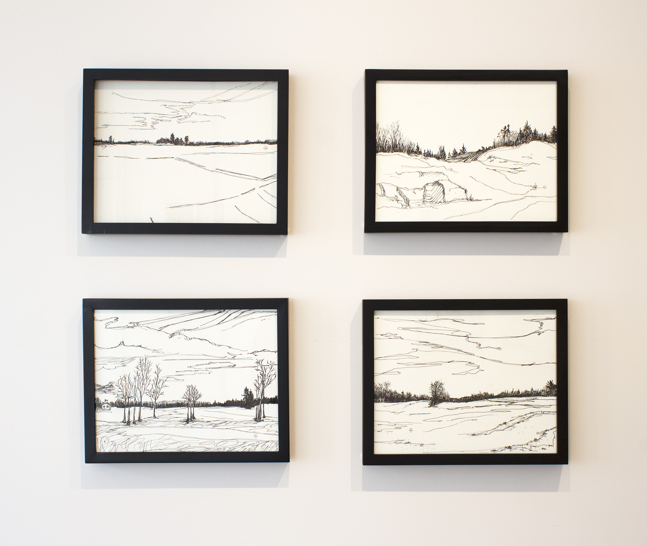 Liz Pead,  Ink Drawings , installation view