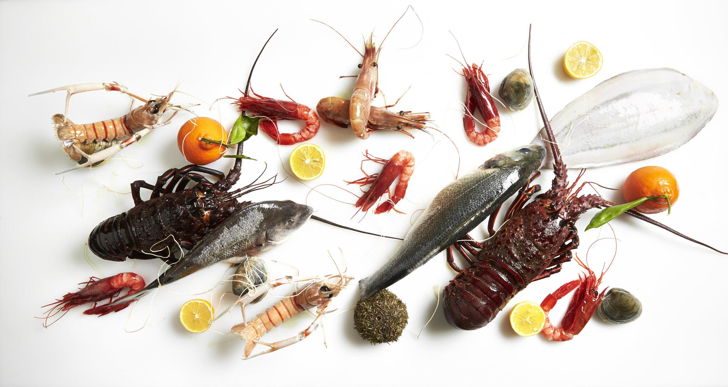 Fiola Mare - Italian Coastal Cuisine