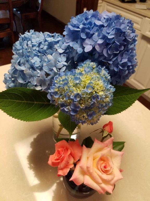 Judy_FloralArrangement.jpg