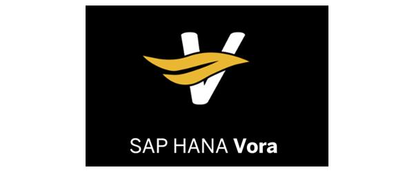 SAP_HANA_VORA-mbv.png