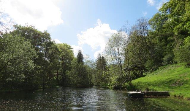 Love the lake 3.jpg