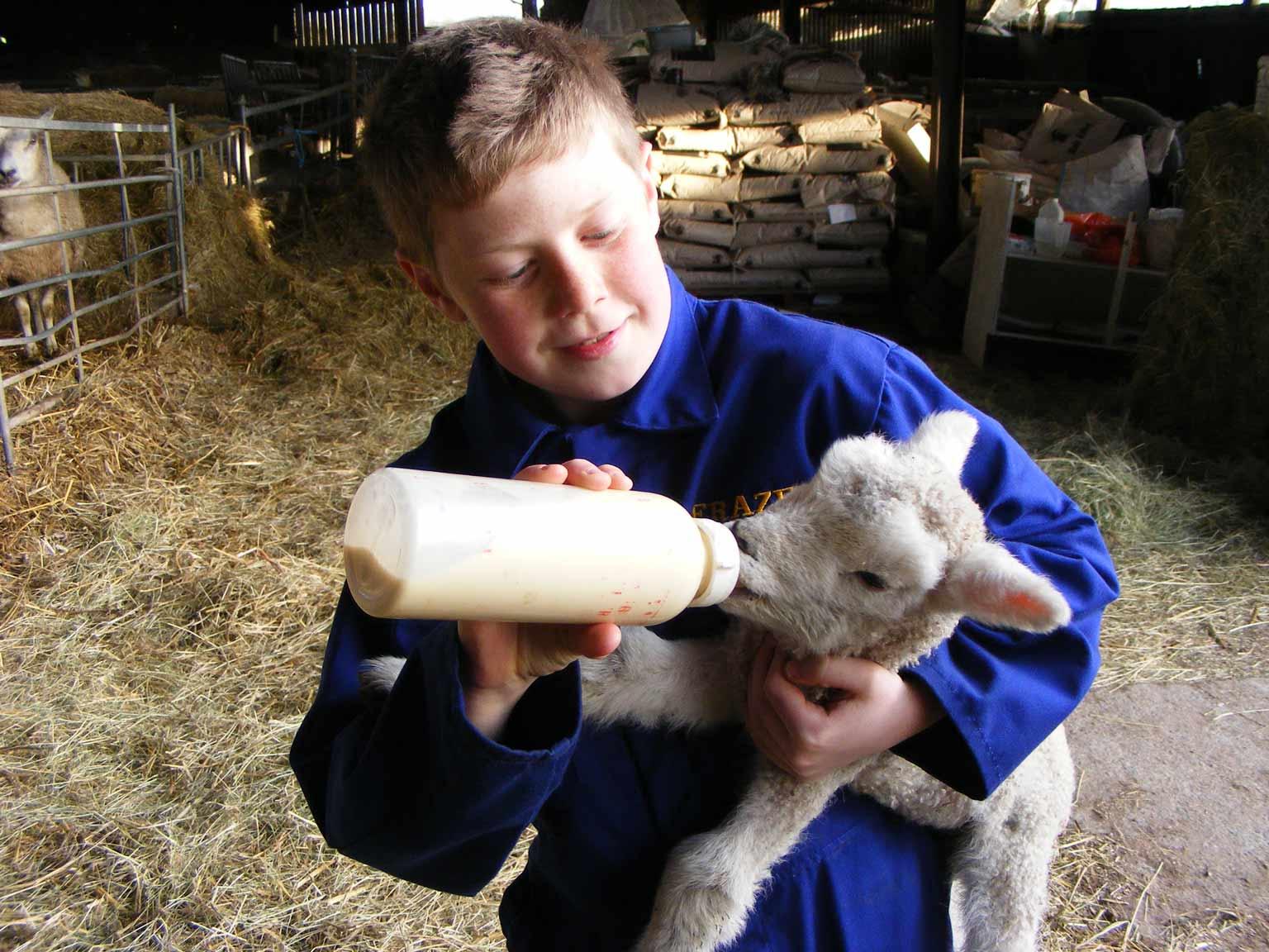 Love the farm 4.JPG