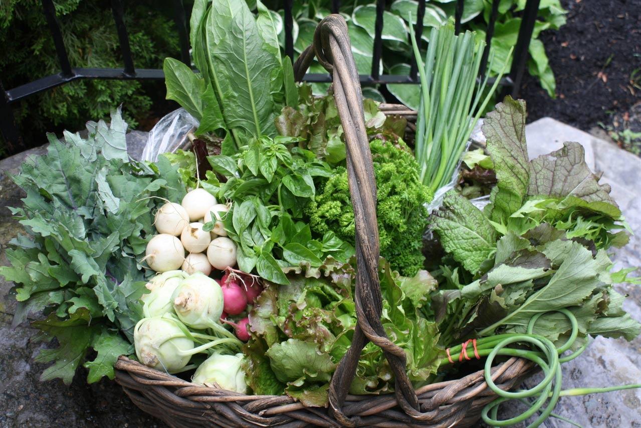 Love the farm 7.jpg
