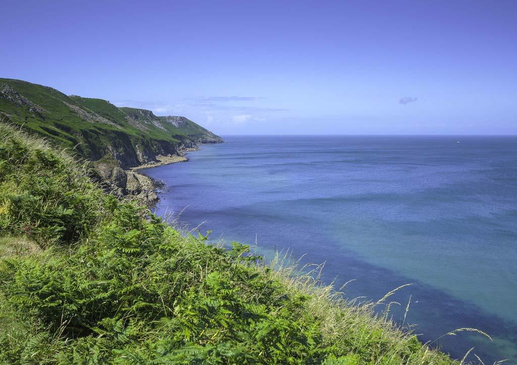 Love-North-Devon-Enviroment-1.jpg