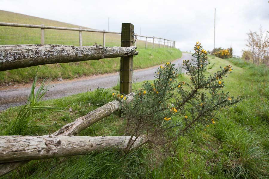 Love-North-Devon-Enviroment-6.jpg