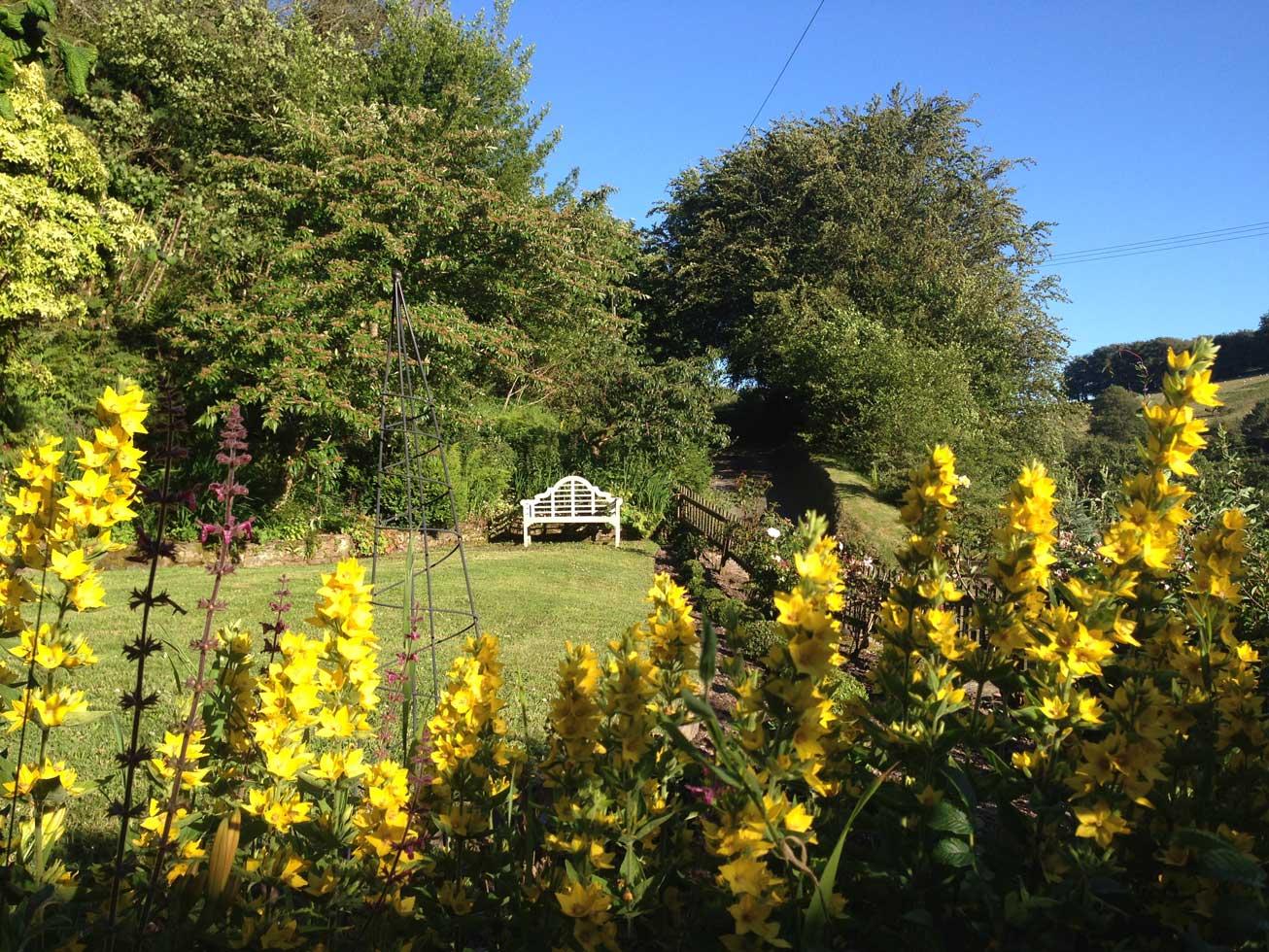 Love-North-Devon-Enviroment-8.jpg