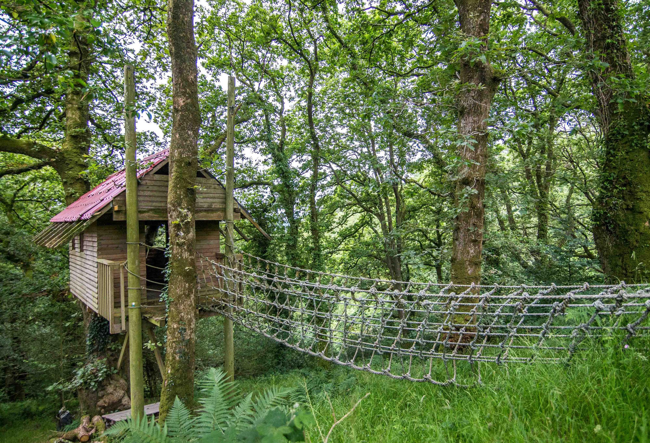 Love North Devon holidays WOODS 4.jpg