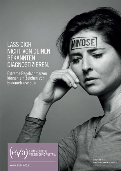 austria affiliate partner image from their fb 2019.jpg