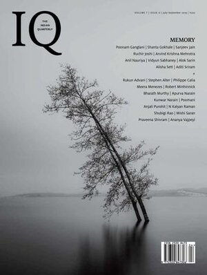 IQ Memory Cover.jpeg