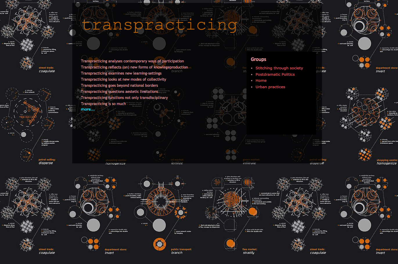 transpracticing-1371x910-23.png