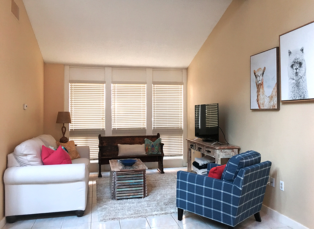 clover-oak-co-stagedtolive-florida-livingroom.jpg