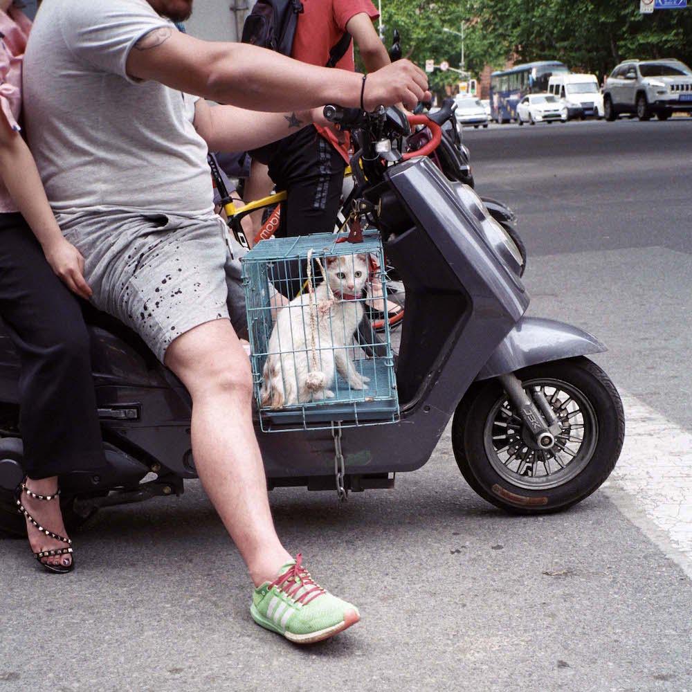 duran-levinson-shanghai-photography-9.jpg