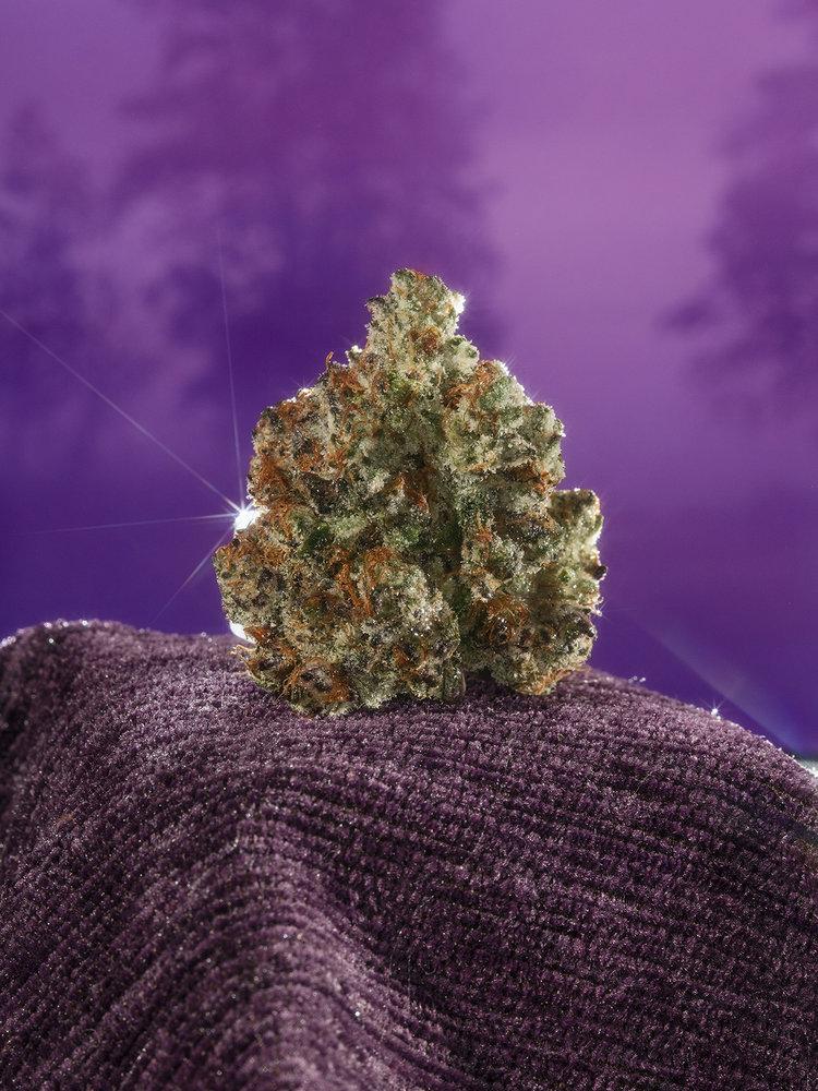 david-brandon-weed-photography-8-1.jpg