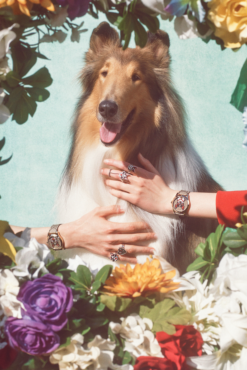 gucci-chinese-new-year-fashion-campaign-petra-collins-11.jpg