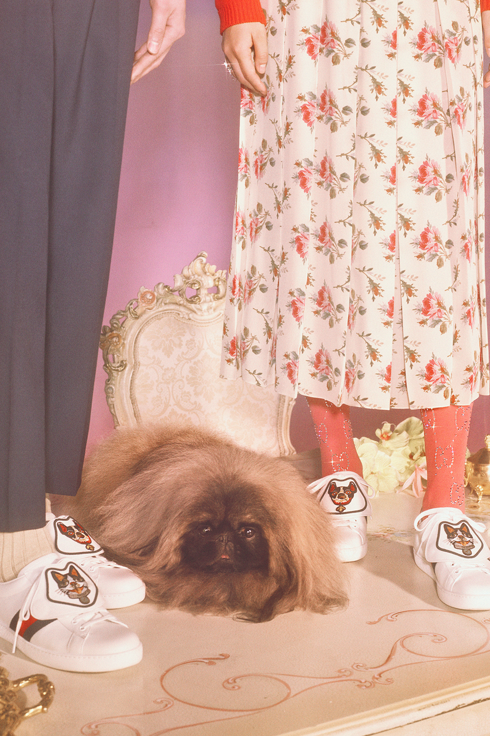 gucci-chinese-new-year-fashion-campaign-petra-collins-13.jpg