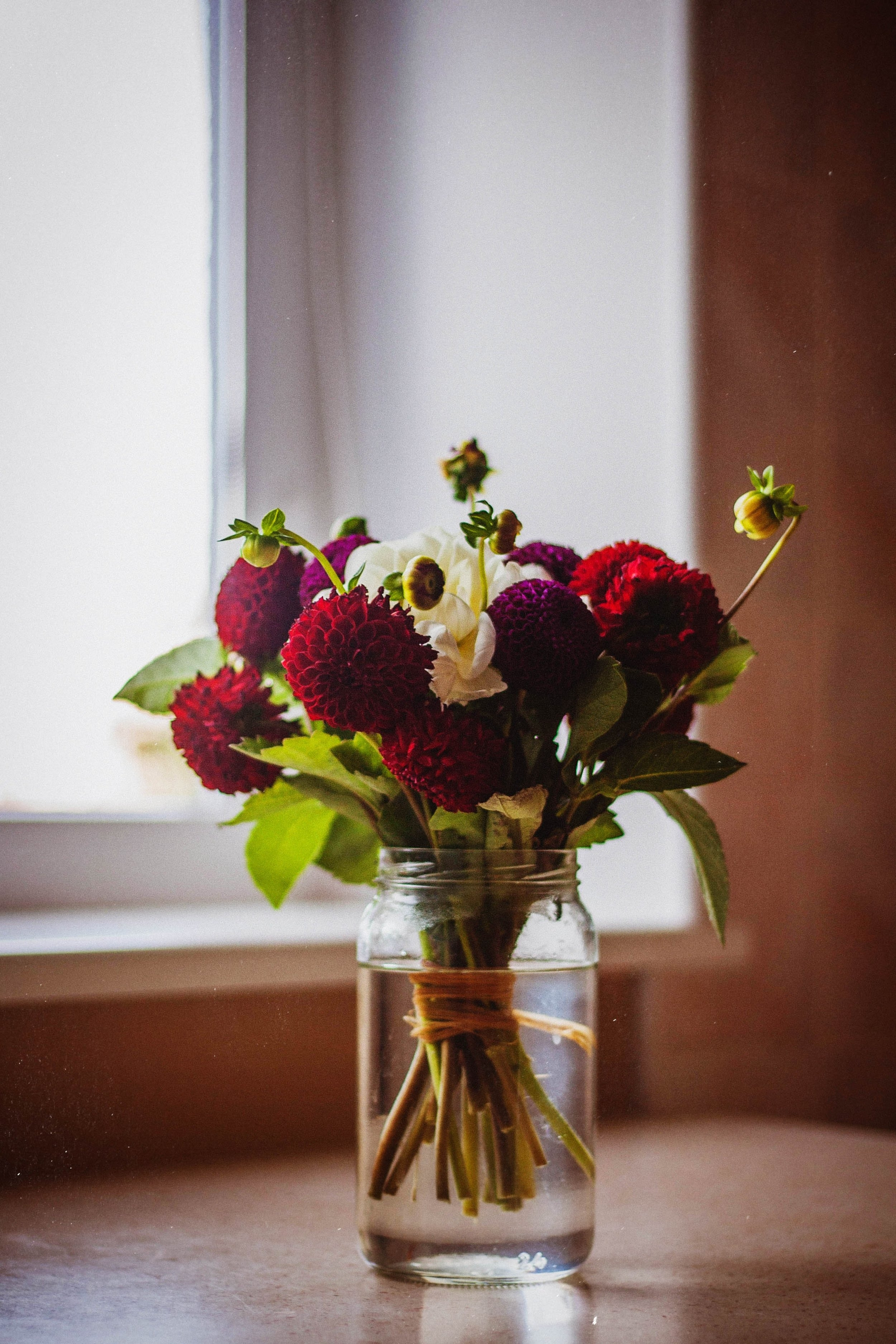 How to keep your flowers looking fresh: -