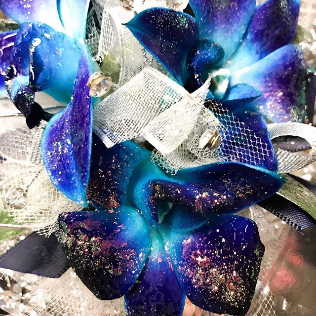 These blue orchids are my new favorite! 🌸 💜  #thecountrystore