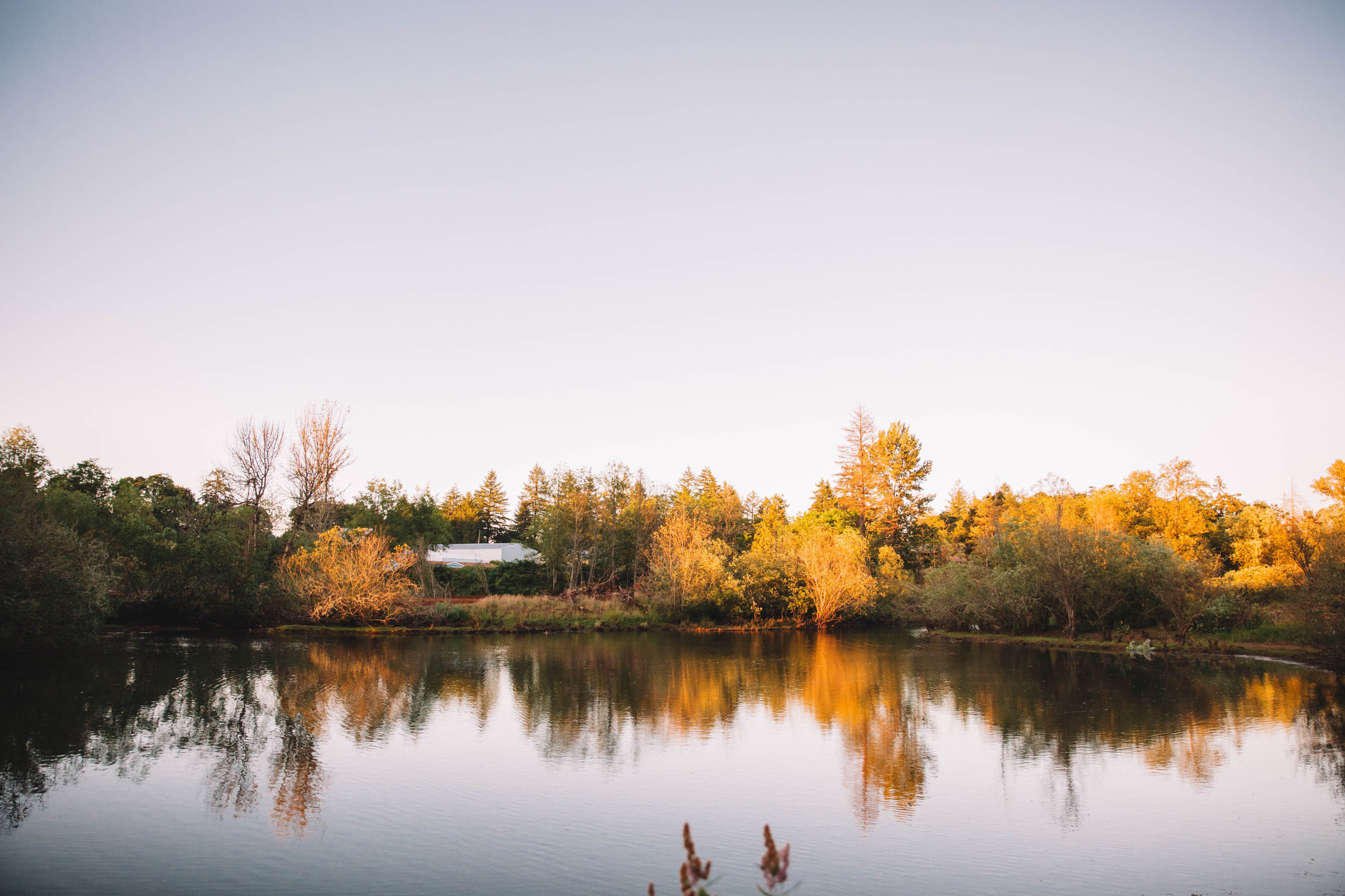 Lake Beside Hope Valley Resort
