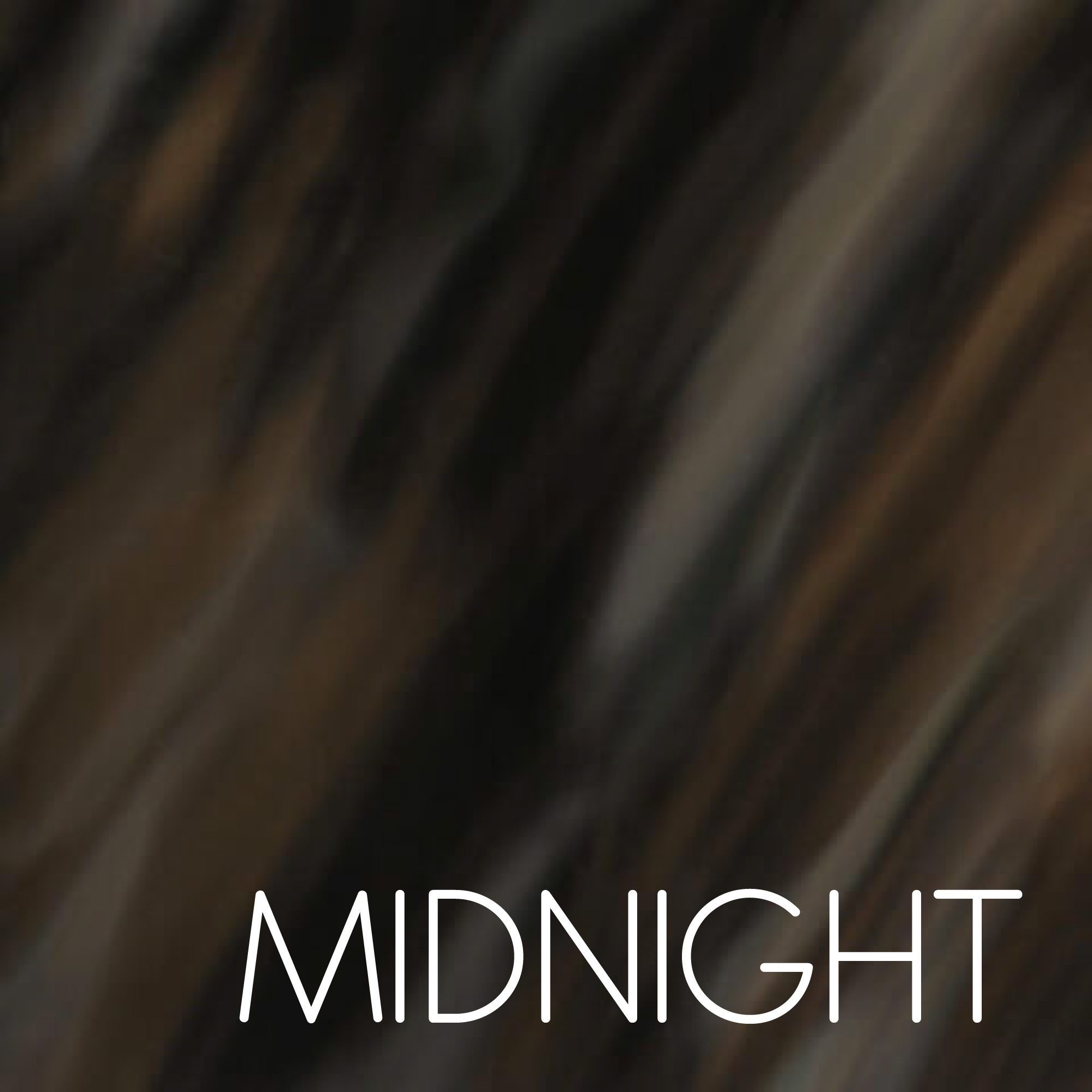 MIDNIGHT SHELL-01.jpg