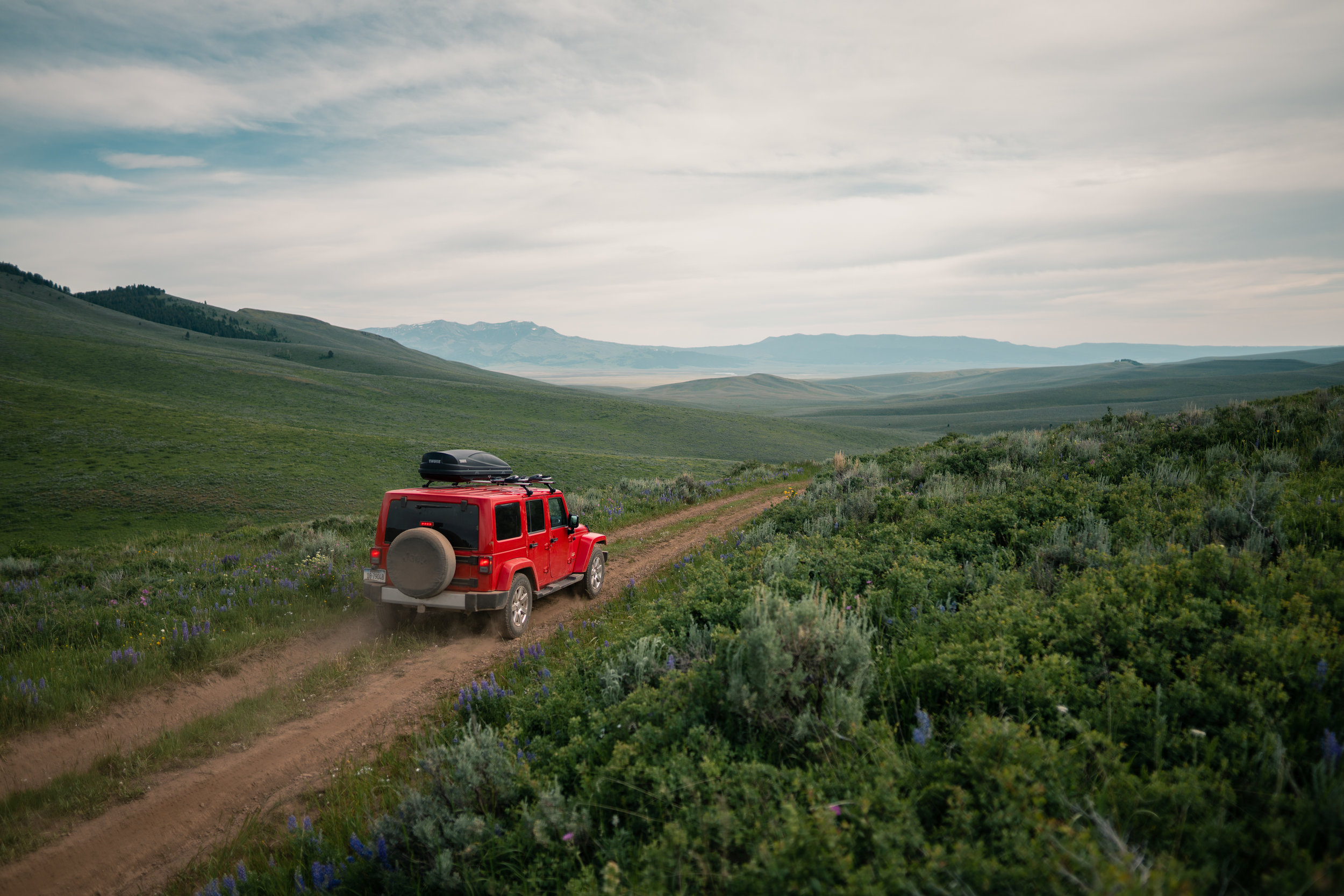 Driving her jeep into Montana's Centennial Valley.