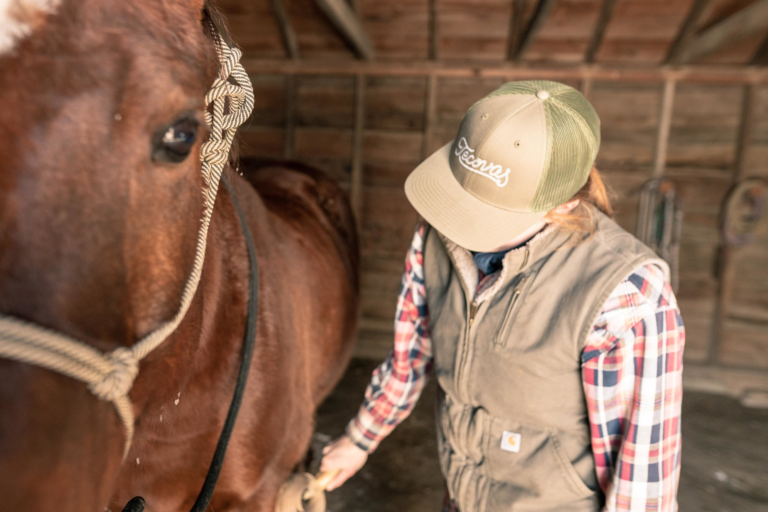 Jenna Flatgard wearing a Tecovas hat while brushing her horse in her barn in eastern Montana.
