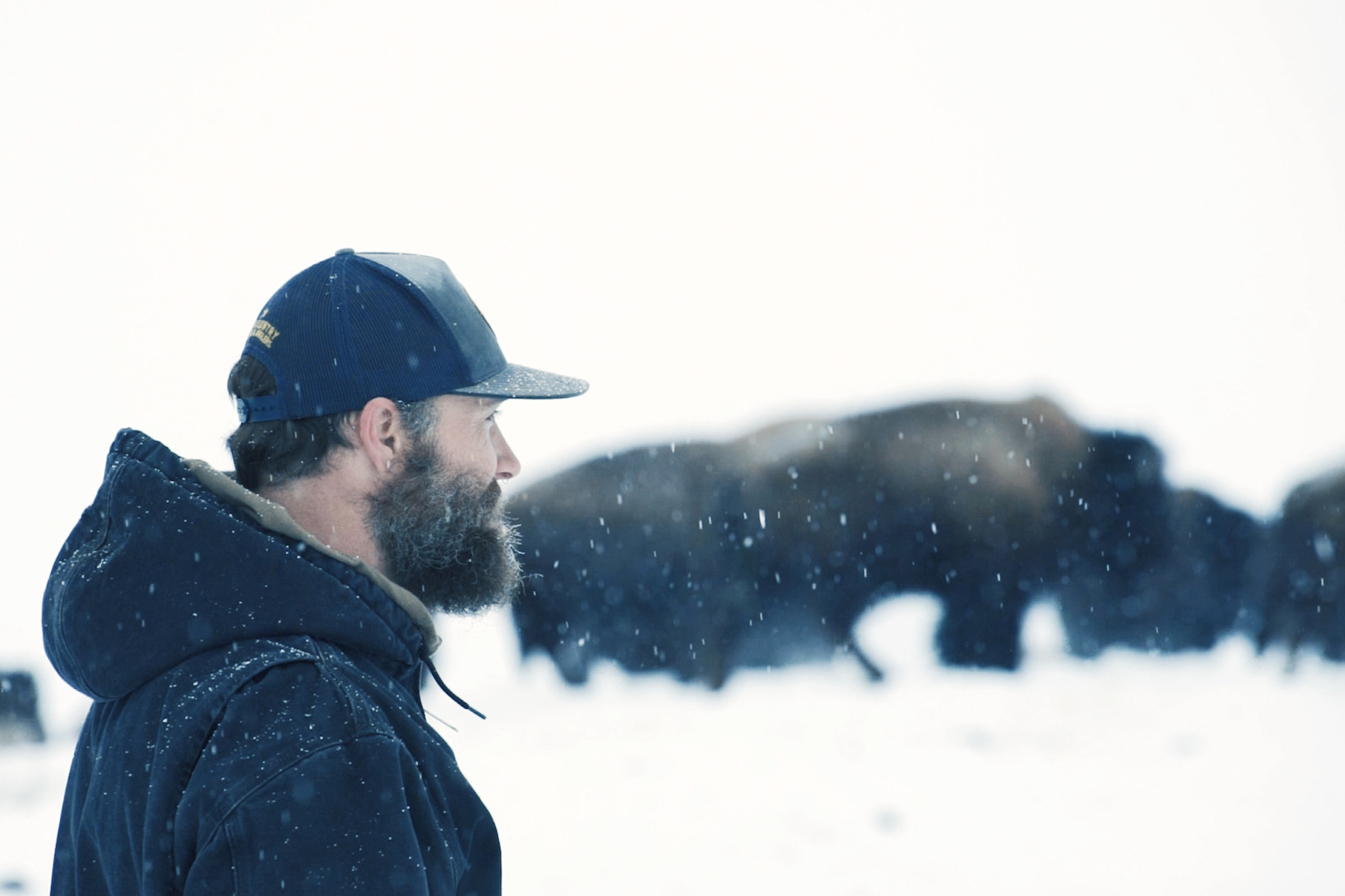 North Bridger Bison - Creating Media Assets for an Emerging Business