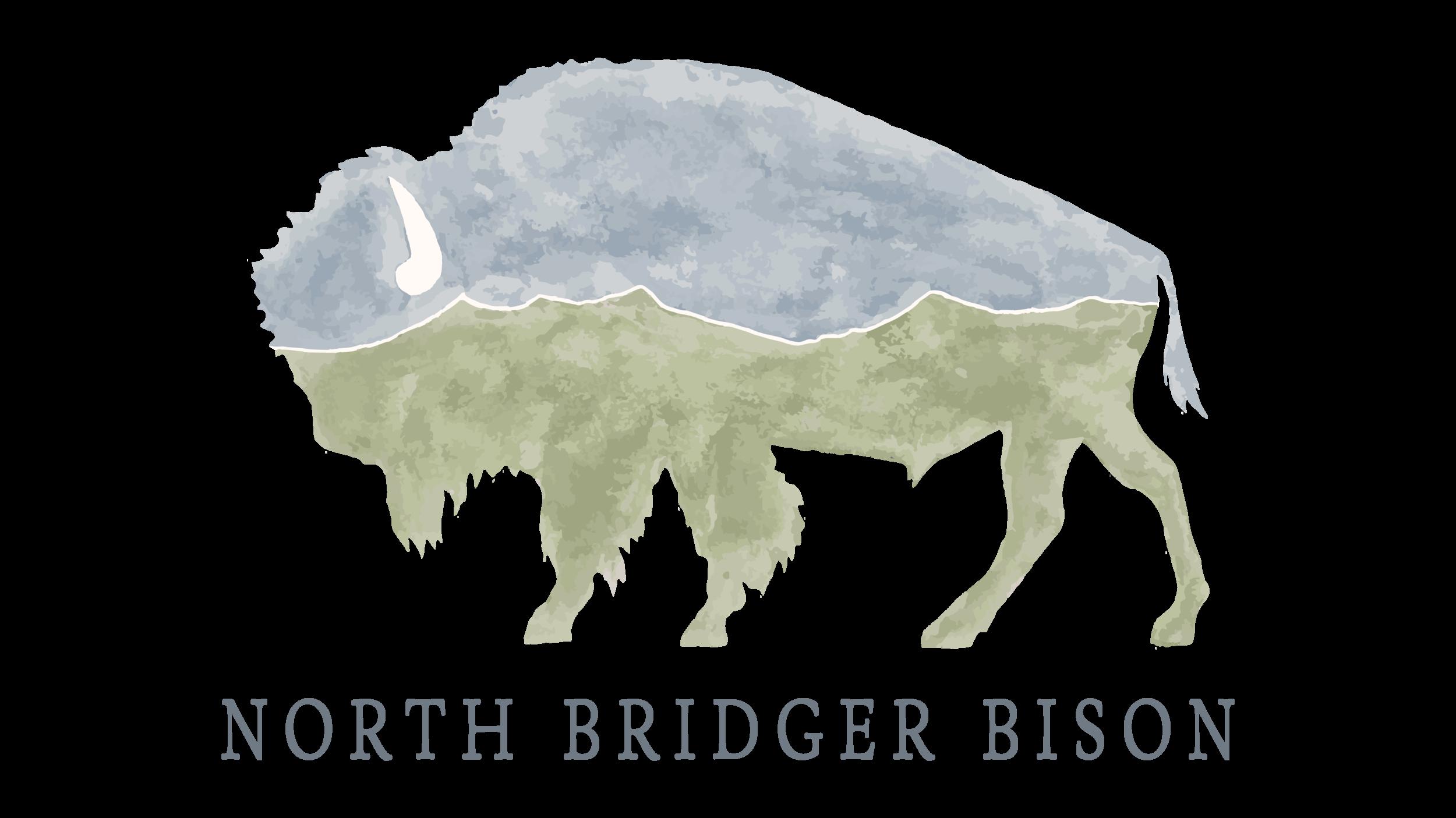 NBB_Logo_WhiteCenter_Dark.png