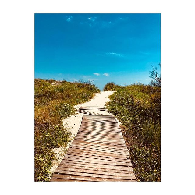 pathway to paradise ✨ tour of beaches continues.... check geotag for current locale.  #superchillsurfclub