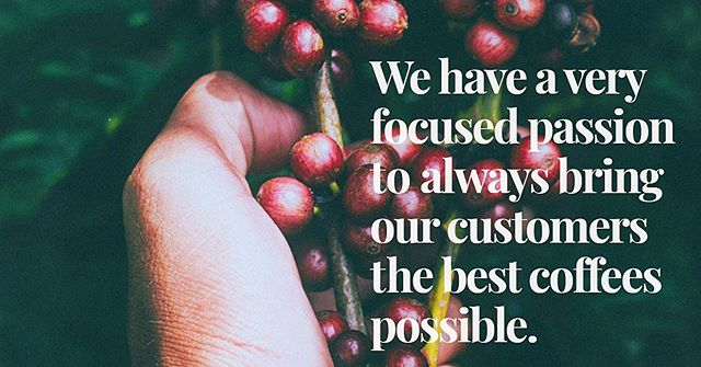 Helping our costumer locate, evaluate, and procure the world finest coffee, is both our business and true passion. . . . . #redgonicoffee #redgoni #coffee #passion #procure #procurement #worldbest #worldfinest #greencoffee #coffeebean #specialtycoffee #mondaymood #mondaymotivation