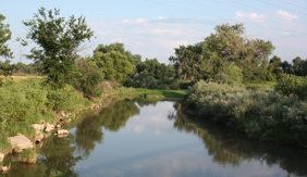 Cache La Poudre River south of the farm