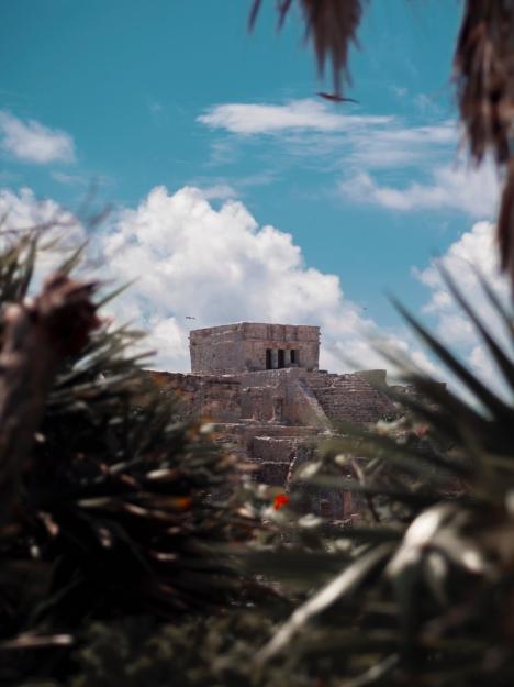 Ruins at Jungle Maya