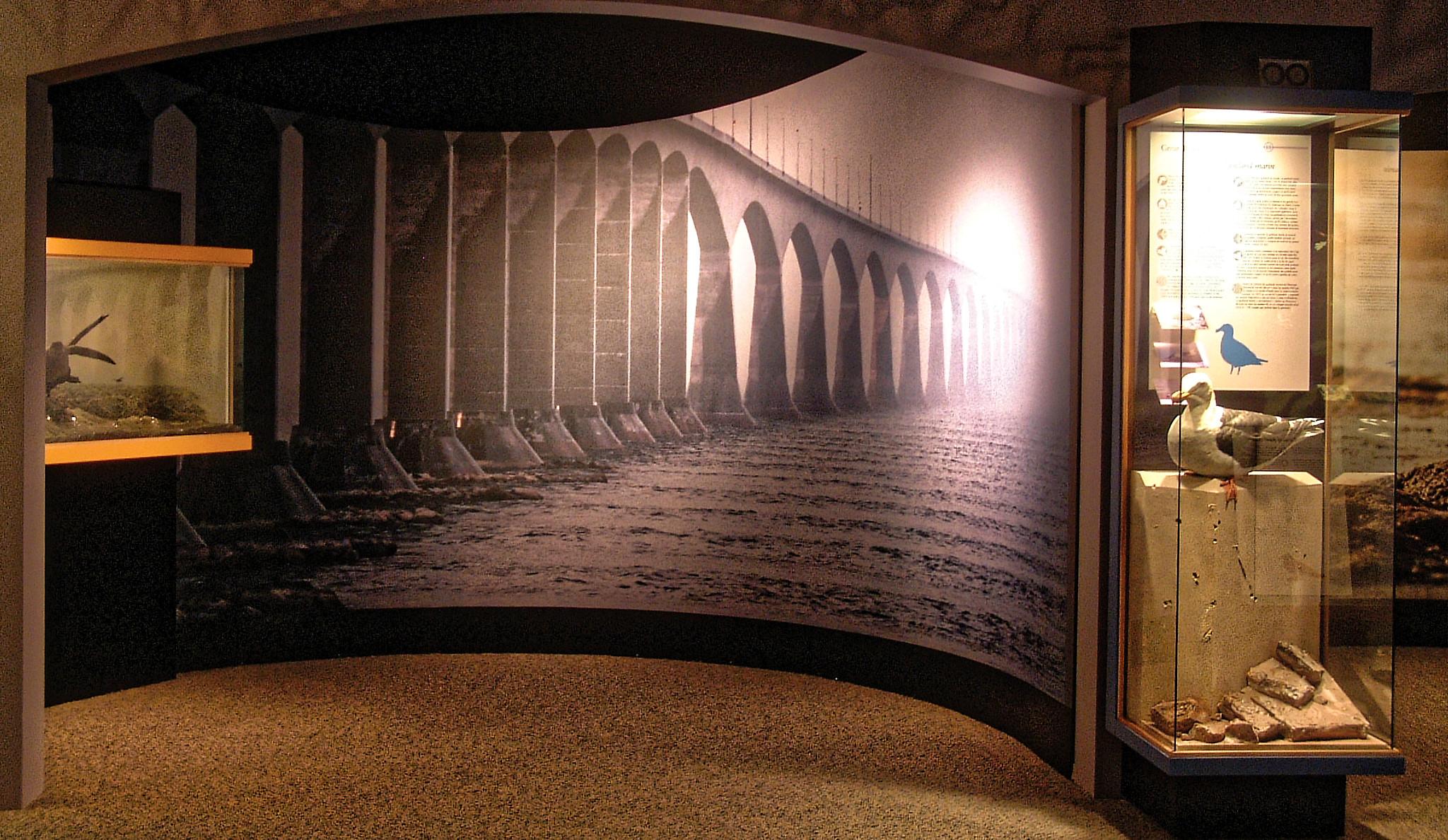 bridgephotoCJ.jpg