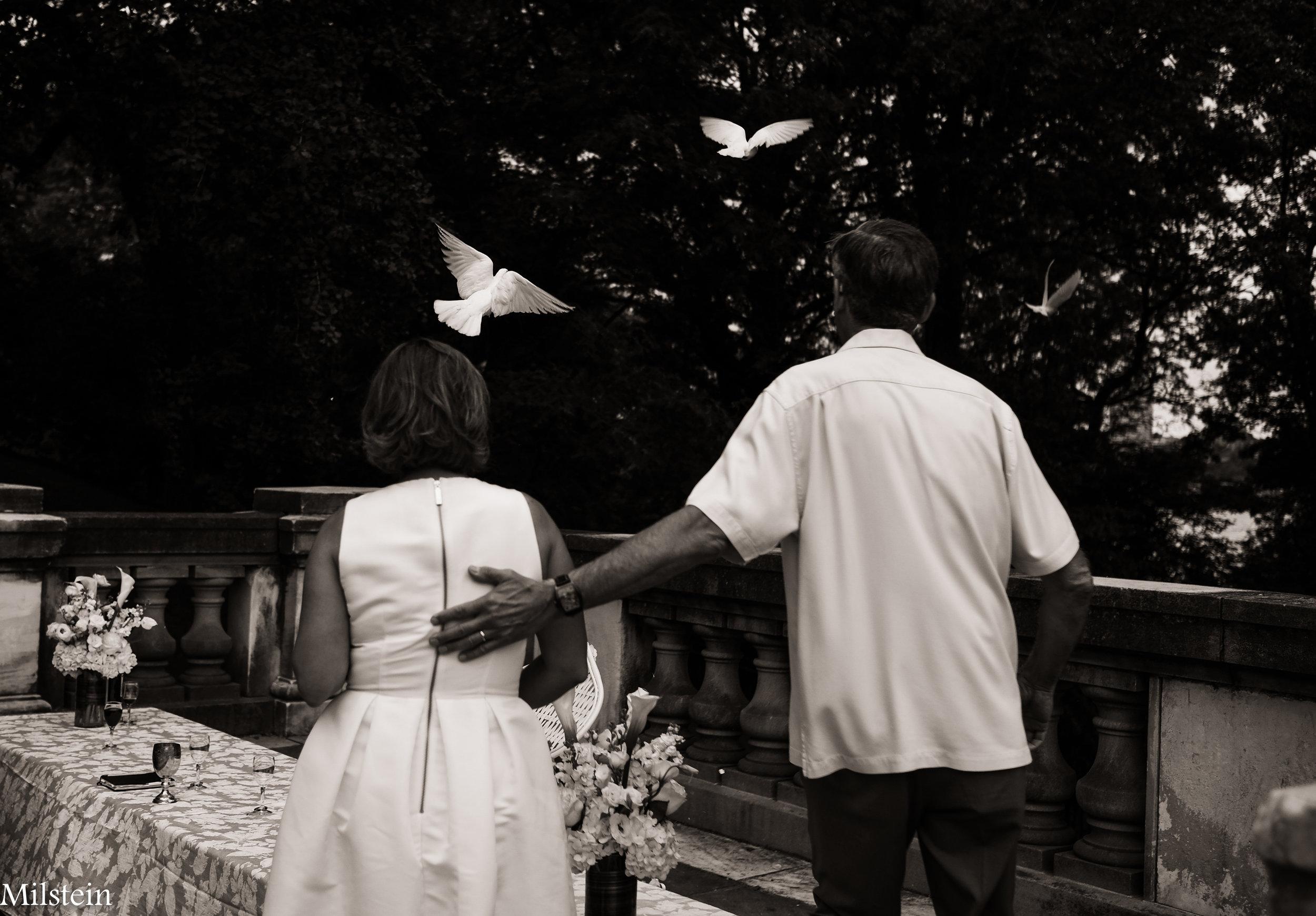 Wedding-Photographer-Amy-Milstein-Best-Wedding-Photographer.jpg