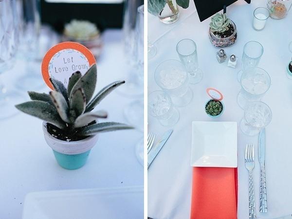 Gorgeous wedding favor idea -- succulents!