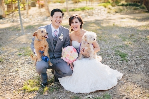 Lovely bride and groom photo with their furry friends.