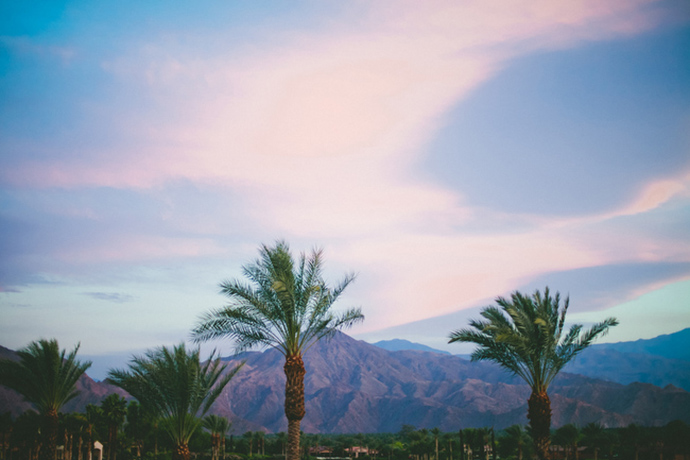 Desert wedding scenery