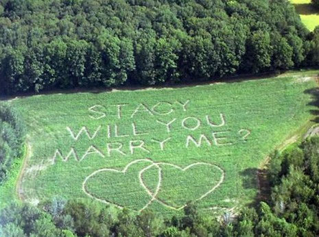 proposal, how to propose, engaged, marriage proposal, pop the question, private engagement, proposal idea, proposal planning, cool proposal