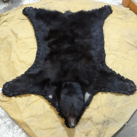 black-bear-rug.jpeg