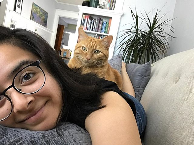 Happy #InternationalCatDay. WePod member @cynthiajzapata really loves her gato. 🐱💜
