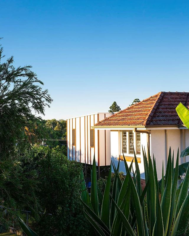 Peek-a-boo. Old meets knew.  #brisbanerenovation #houserenovations #backyardtransformation #houses #brisbane #brisbanearchitecture #design #staffordheights #leitharchitects