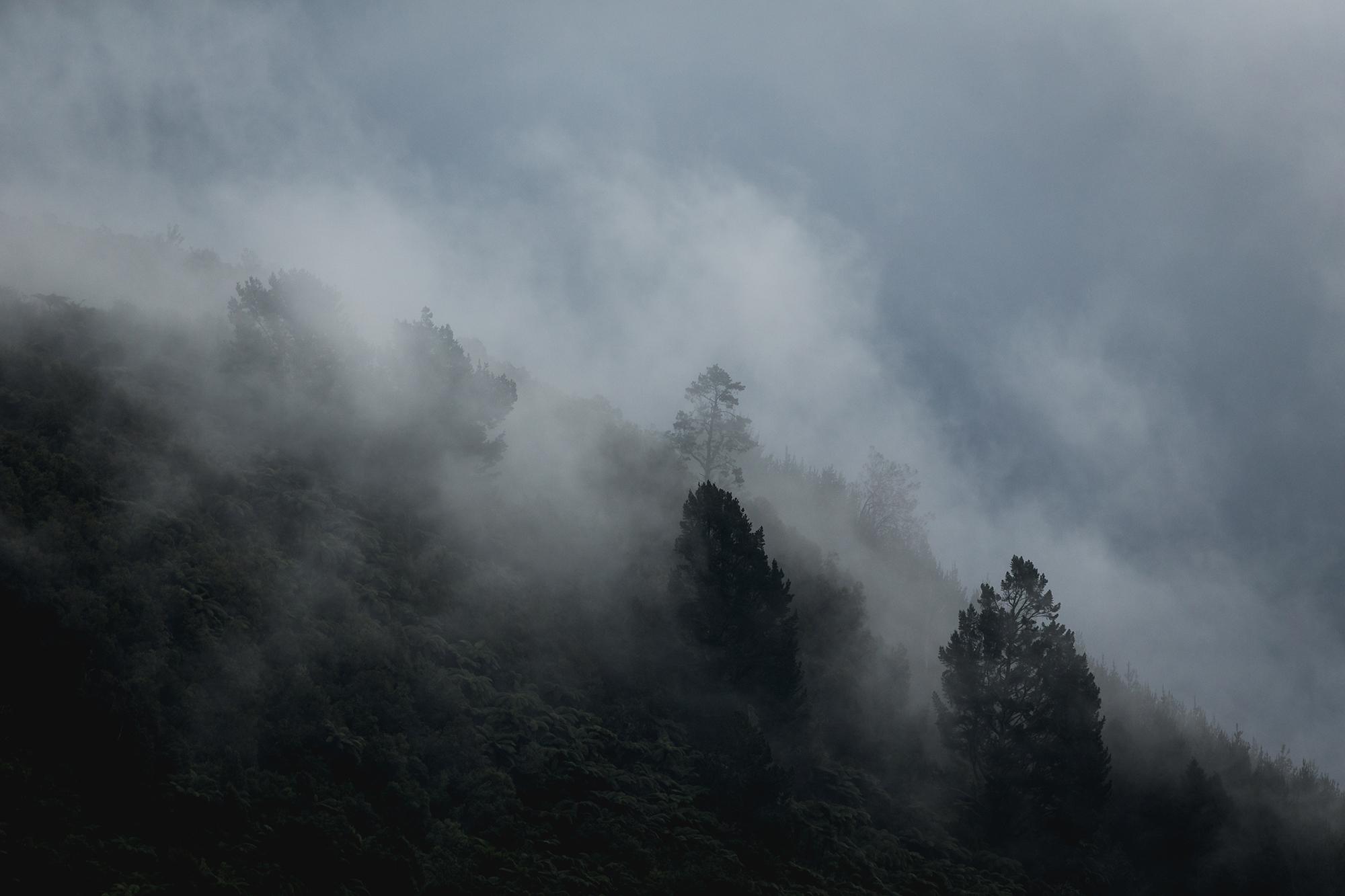 Mood. Rotorua, NZ