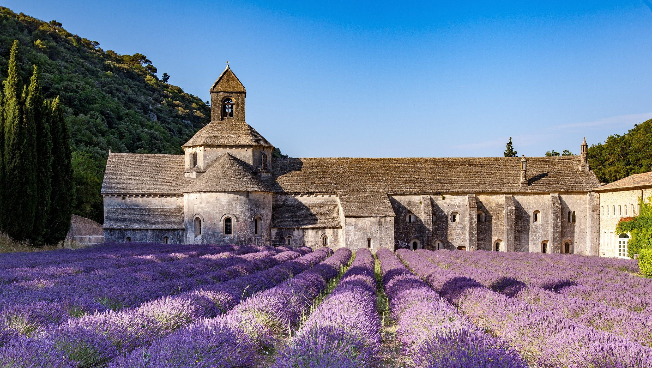 If you've been on the Internet at all in the past 10 years, then you will have surely seen photos of Provence's unreal lavender fields but unfortunately you couldn't have smelt them! - Discover the Rhone Valley wines and the famous Château-Neuf du Pape, as well as many more on our Provence food and wine tour!